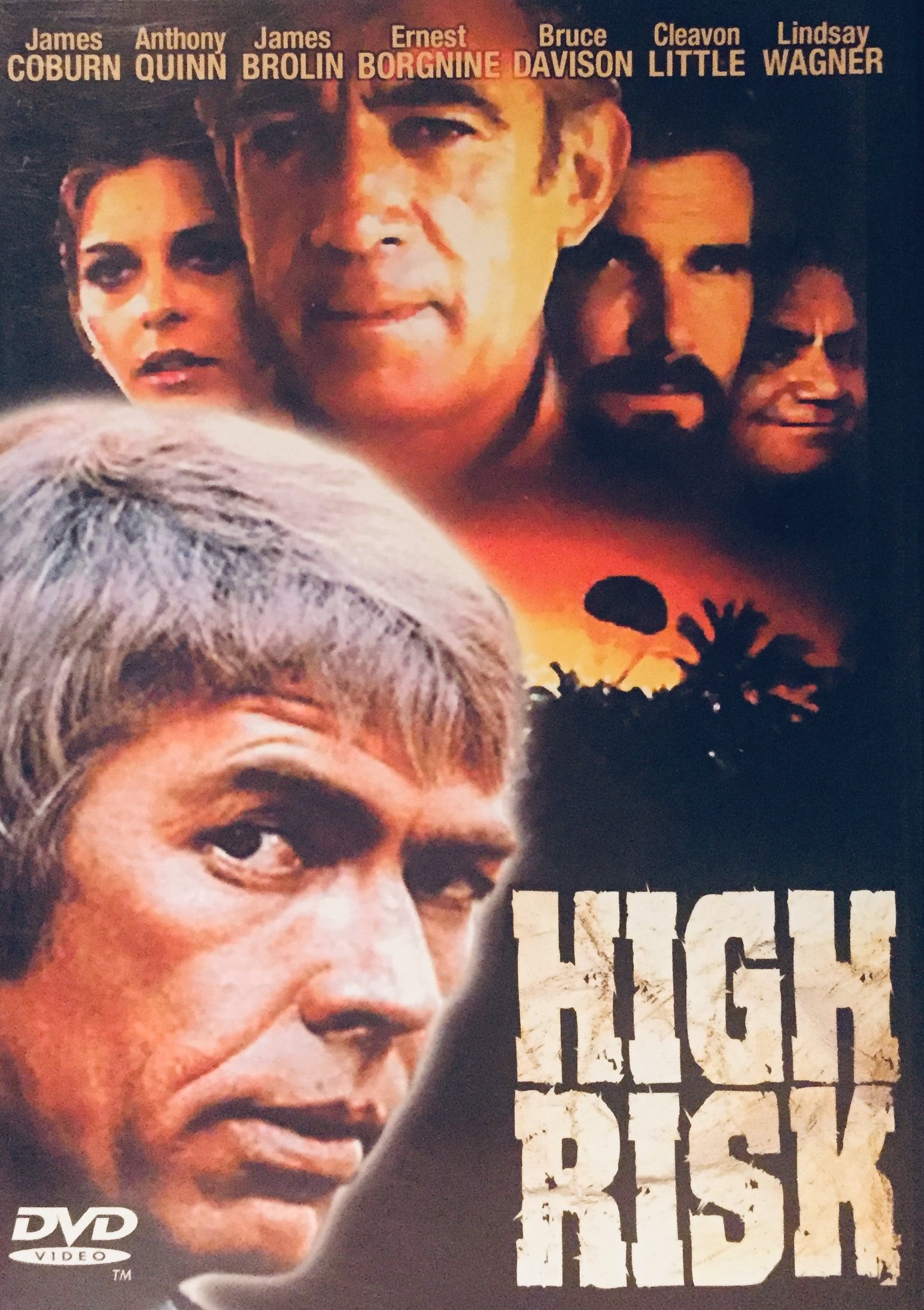 High Risk - DVD /plast/