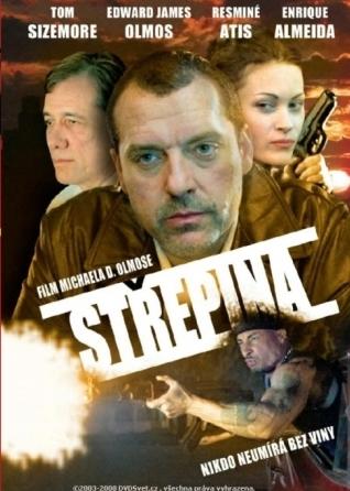 Střepina - DVD /plast/