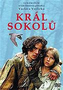 Král sokolů ( pošetka ) DVD