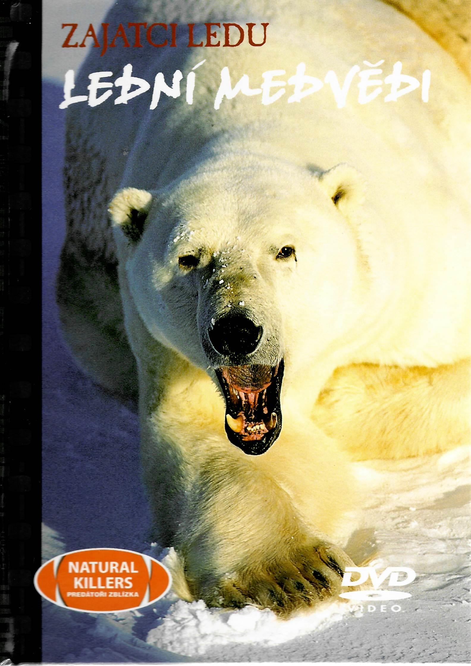 Zajatci ledu - Lední medvědi - DVD + brožura