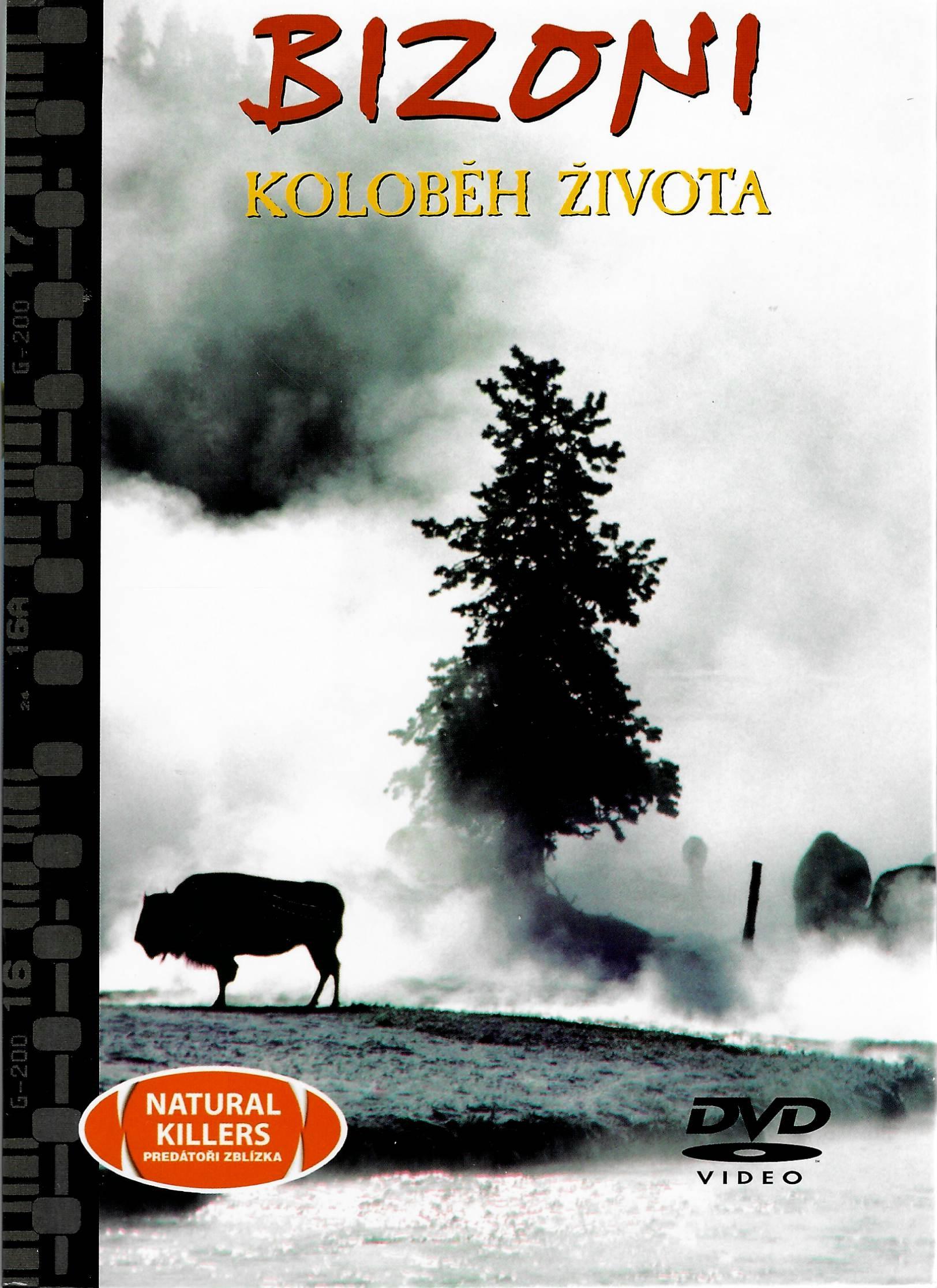 Bizoni - koloběh života - DVD + brožura