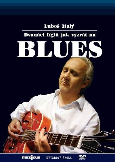 Luboš Malý - Dvanáct fíglů jak vyzrát na blues - DVD /plast/