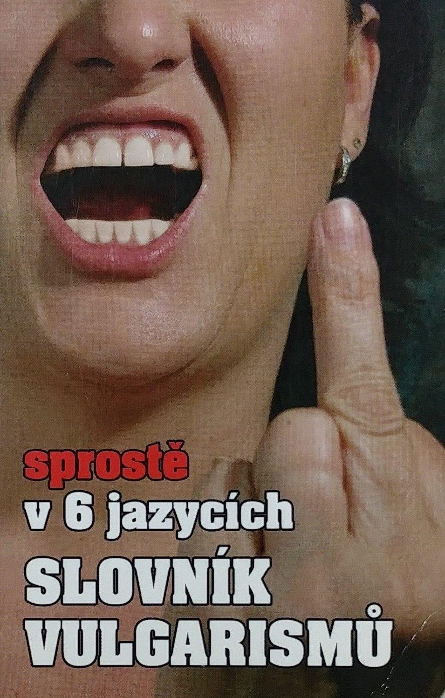 Sprostě v 6 jazycích - Slovník vulgarismů - Kryštof Bajger a kolektiv