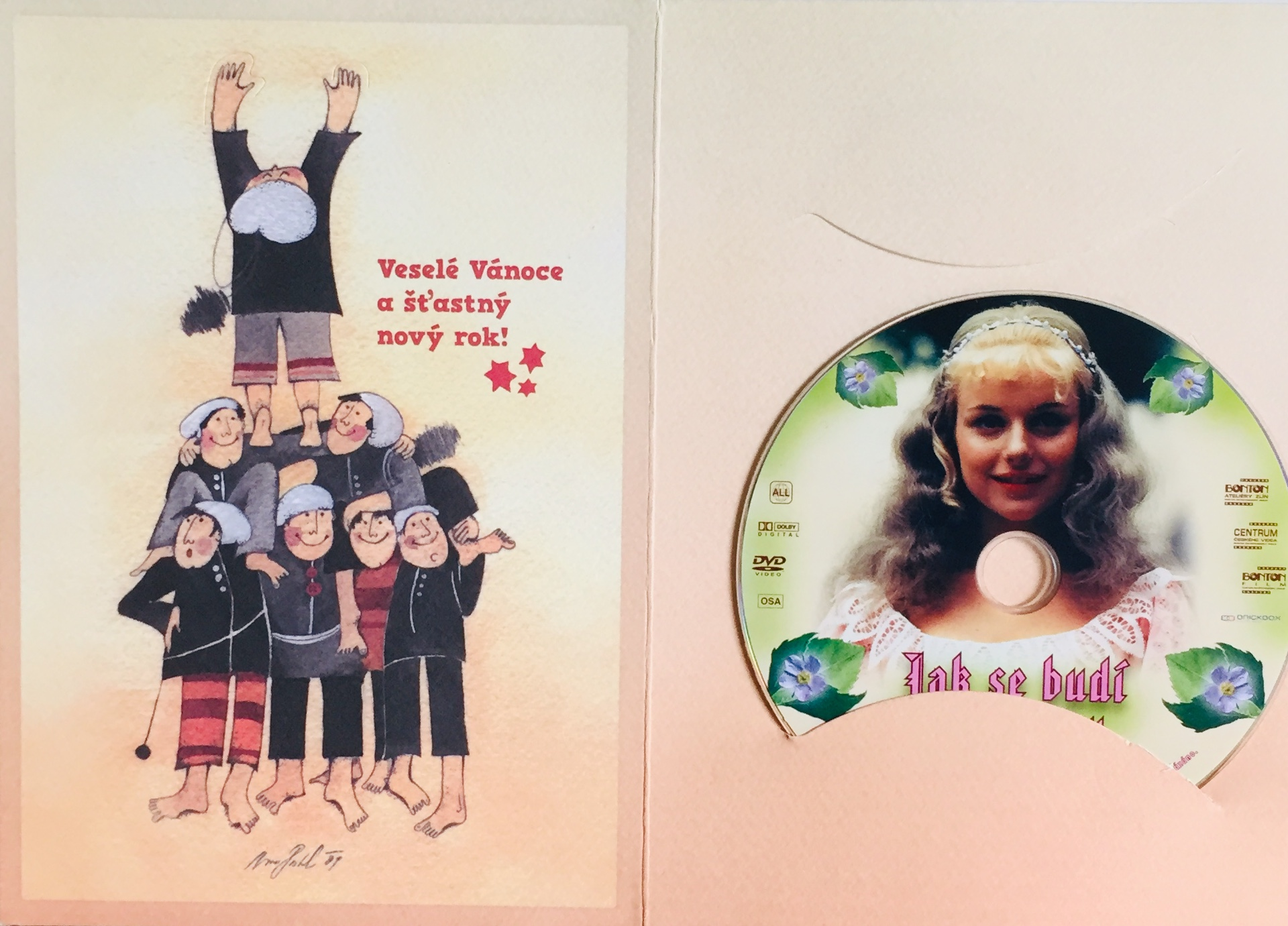 Jak se budí princezny - DVD /dárkový obal/