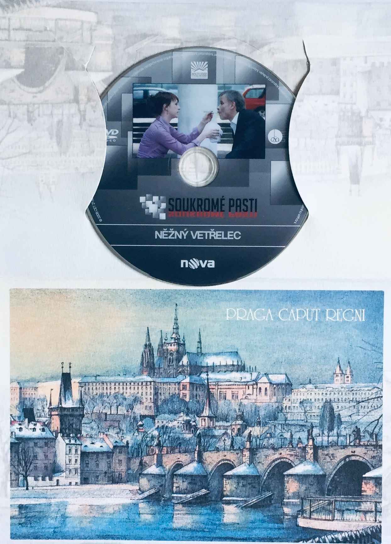 Soukromé pasti 1 - Něžný vetřelec - DVD /dárkový obal/