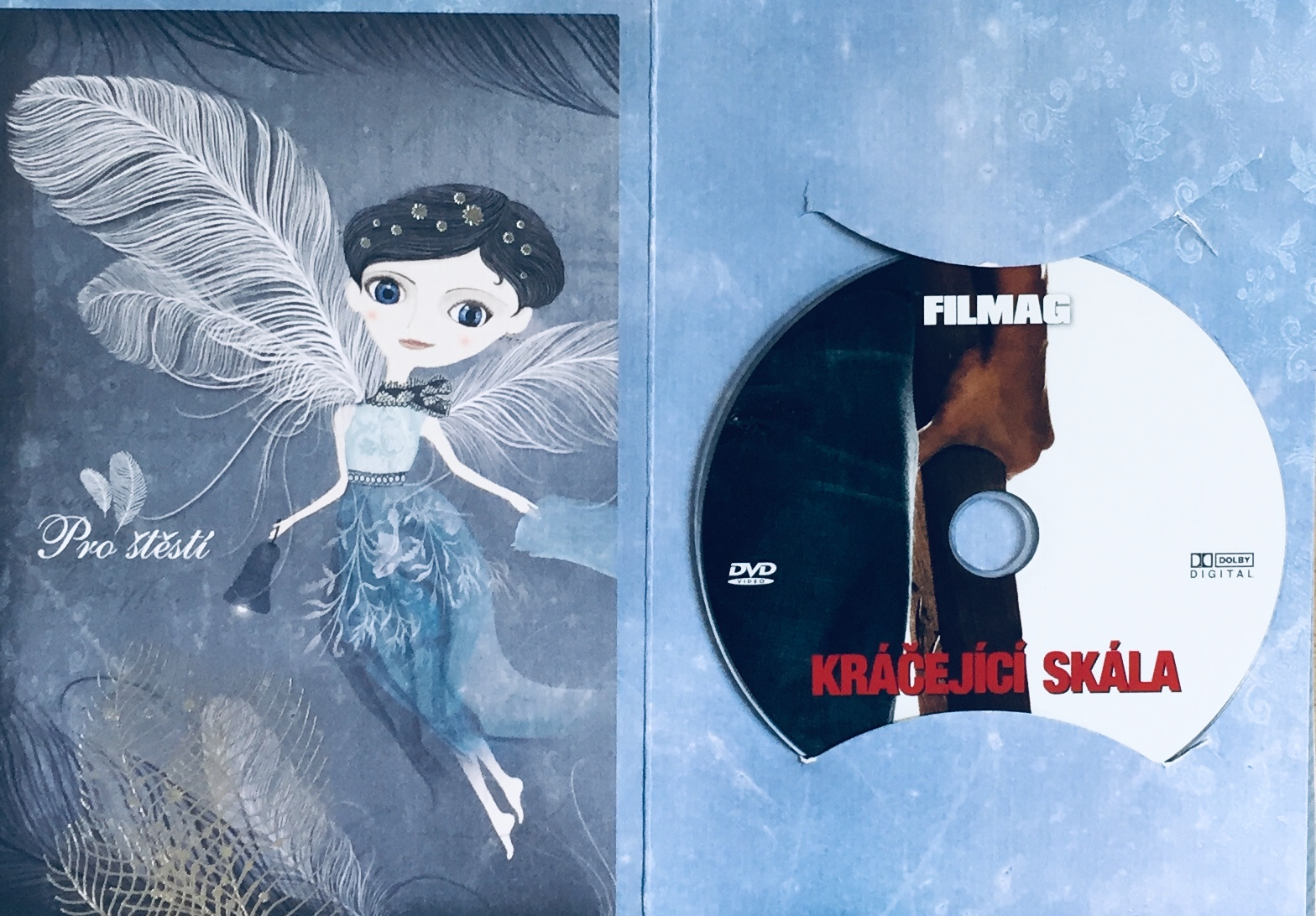 Kráčející skála - DVD /dárkový obal/