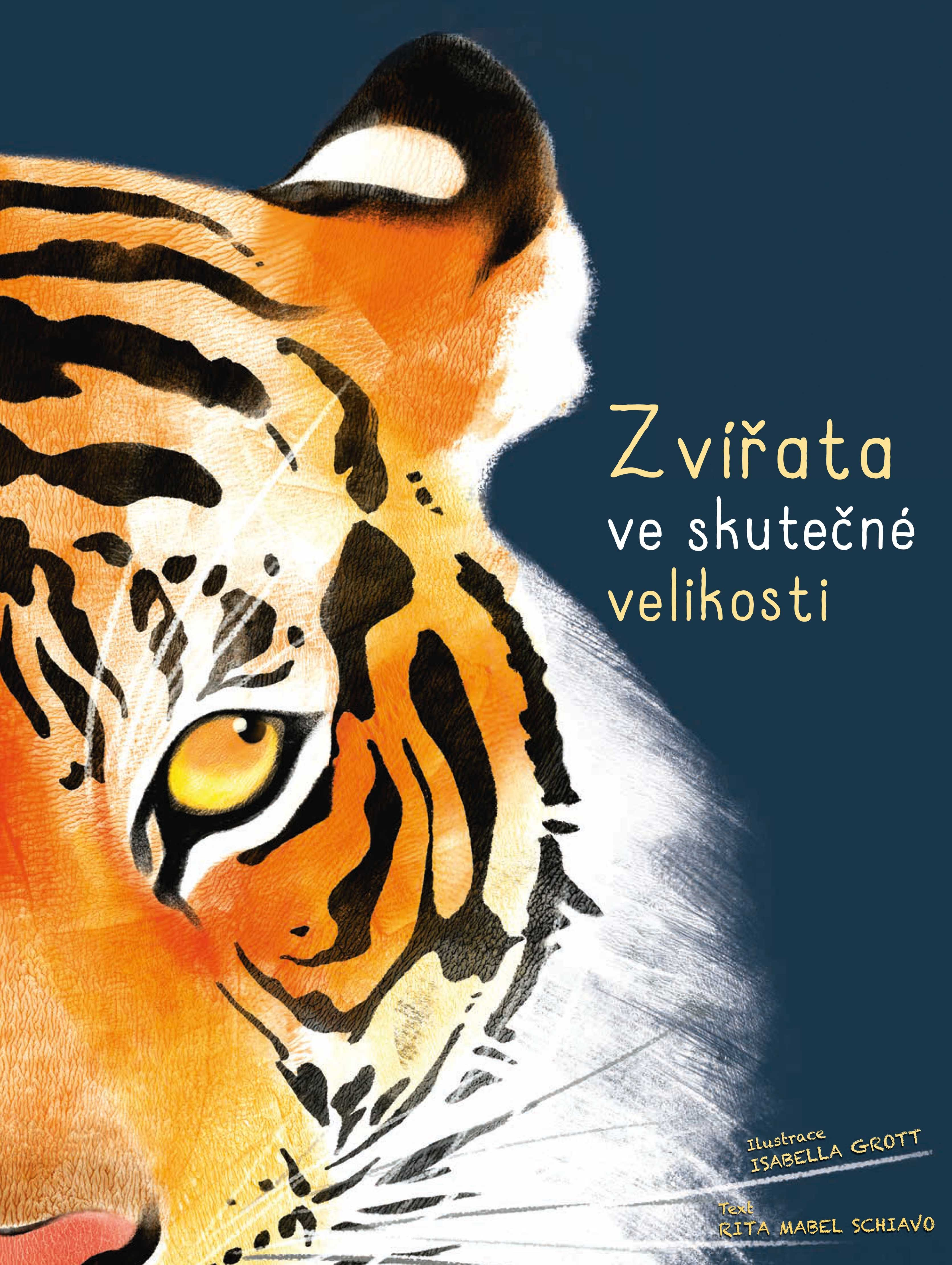 Zvířata ve skutečné velikosti - Rita Schiavo
