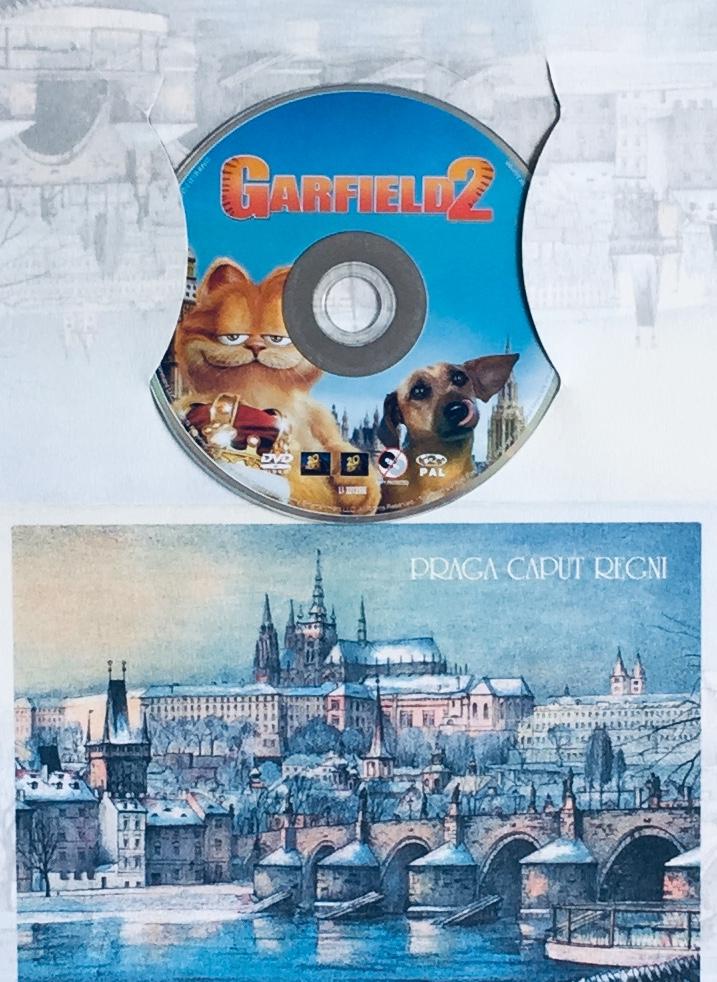 Garfield 2 - DVD /dárkový obal/