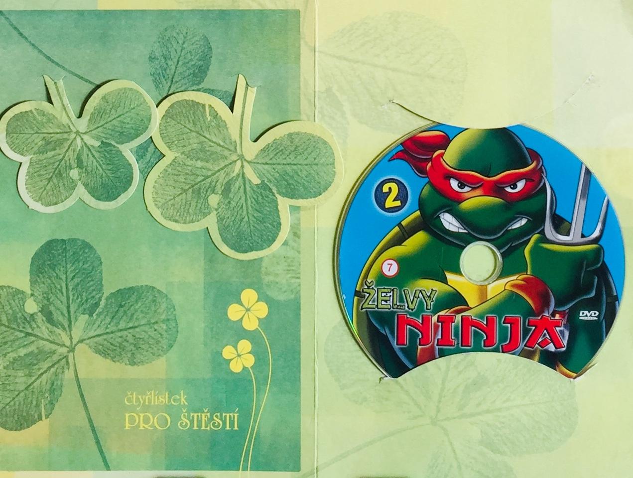 Želvy Ninja 2 /VAPET/ - DVD /dárkový obal/