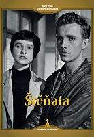 Štěňata - digipack DVD