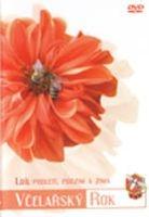 Včelařský rok - 1. díl: Podletí, podzim a zima - DVD box