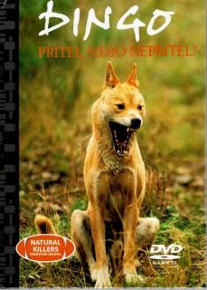 Dingo - přítel, nebo nepřítel ? - DVD + brožura